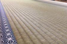 岩本 栄治氏 新品種「涼風」 麻綿表