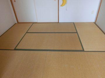 流山市駒木 H様邸 カラー畳縁付き新畳 半畳サイズの市松敷き 施工前